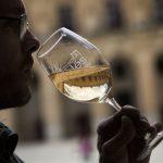 Catas de vinos con Wine Tasting Spain