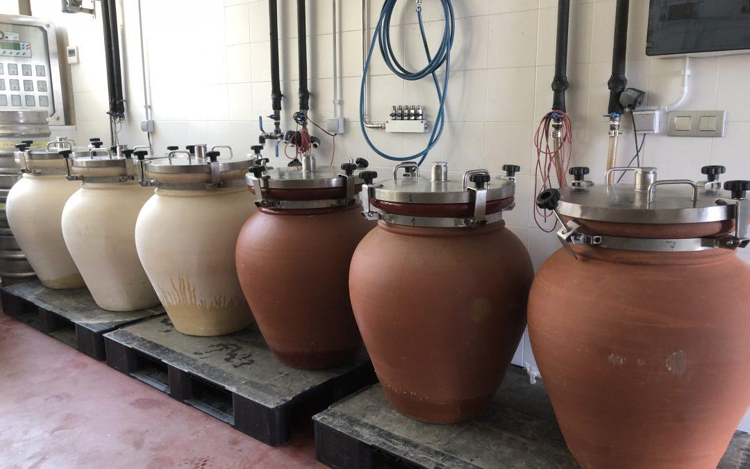 Los vinos de tinaja: Regreso al futuro